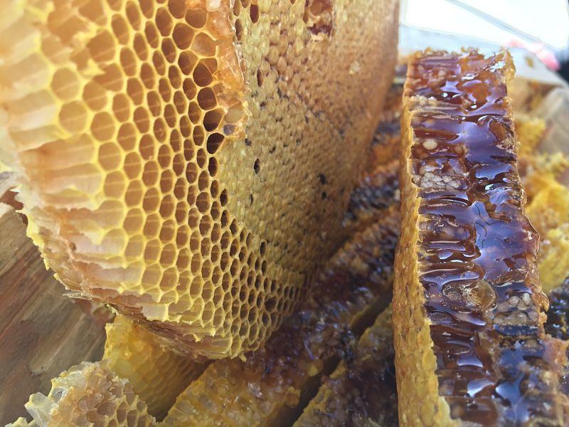 miel sin pasteurizar